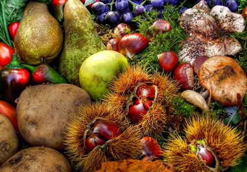 i caldi colori della frutta di autunno